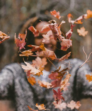 Récit d'une journée pour égayer ton automne!