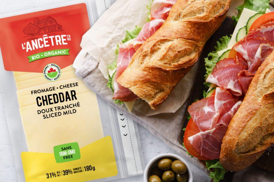 Ancêtre- Sandwich