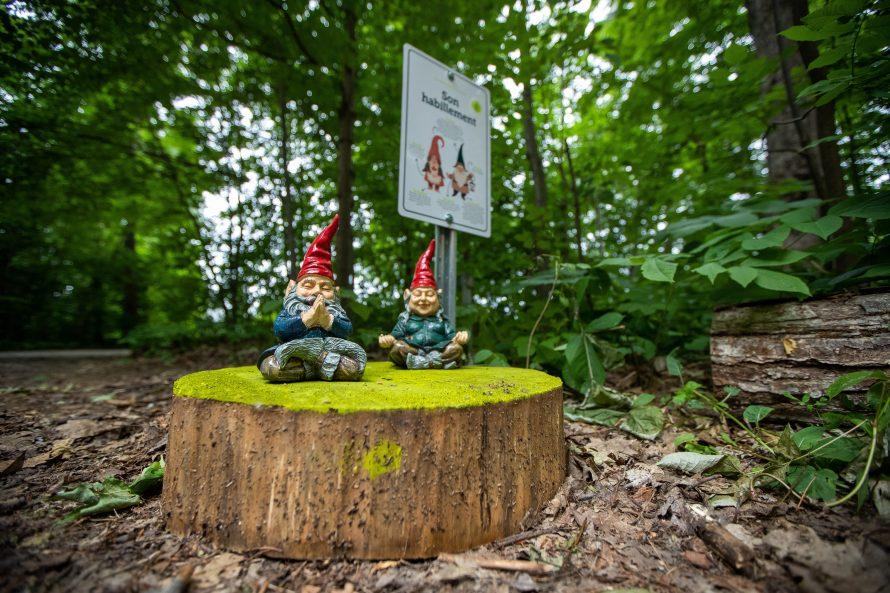 Parc des Gnomes-4075