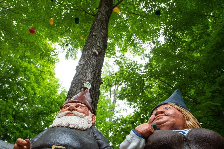 Parc des Gnomes-4087
