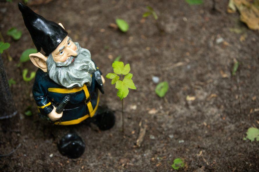 Parc des Gnomes-4134