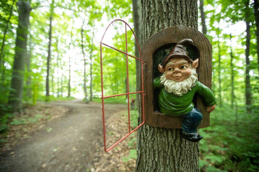 Parc des Gnomes-4165
