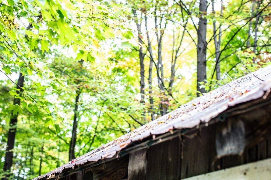 Parc écologique Godefroy-14