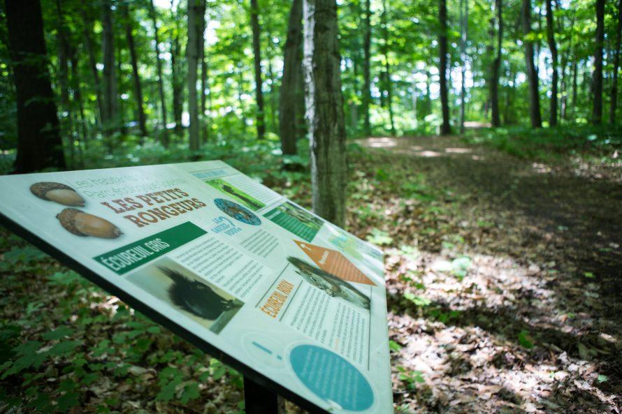 Parc écologique Godefroy